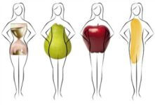 cropped-different-body-types111.jpg